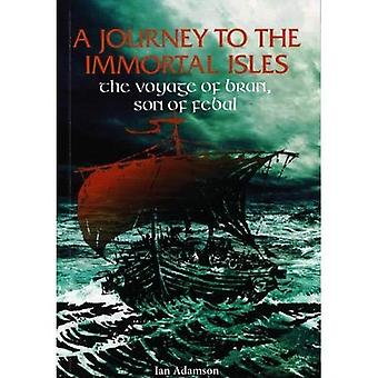 A Journey to the Immortal Isles: The Voyage of Bran,� Son of Febal (1)