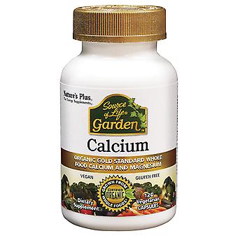 Natures Plus, Source of Life, Garden, Calcium, 120 Vegetarian Capsules