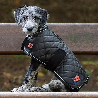 Thermal harness quilted dog coat