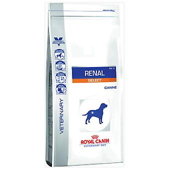 Royal Canin Renal Select (Dogs , Dog Food , Veterinary diet , Dry Food)