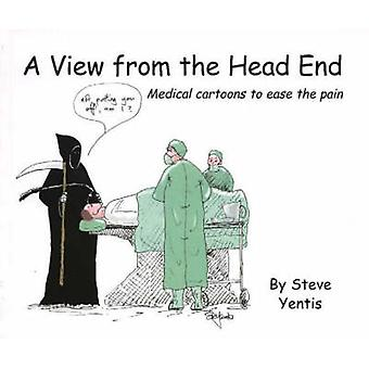 View from the Head End - Medical Cartoons to Ease the Pain by Steve Ye