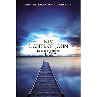 NIV, Evangile de Jean