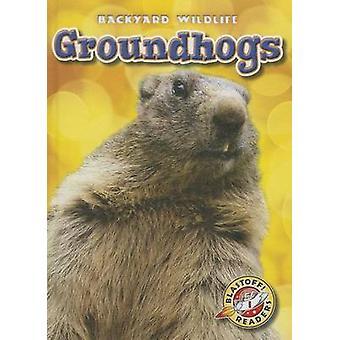 Groundhogs by Kari Schuetz - 9781626170575 Book