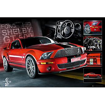 Easton rode Mustang GT500 Maxi Poster 61x91.5cm
