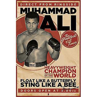 Poster - Studio B - Ali - Vintage 36x24