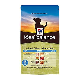 Hill's Ideal Balance Puppy With Fresh Chicken And Brown Rice 12kg