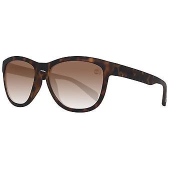 Timberland sunglasses mens Brown