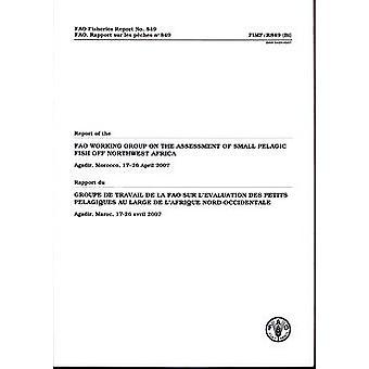 Rapport från FAO arbetsgruppen om bedömning av små pelagiska Fi
