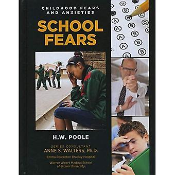 Skolan rädslor
