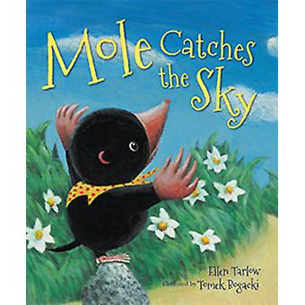 Mole Catches the Sky by Ellen Tarlow - Tomek Bogacki - 9781595726575
