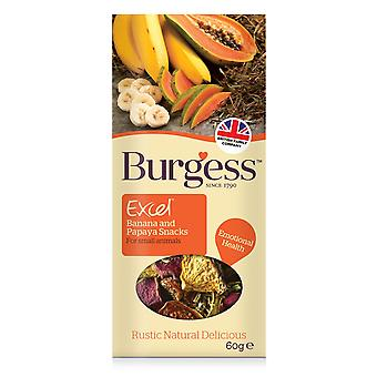 Burgess Excel Salad Snacks Banana & Papaya 60g (Pack of 6)