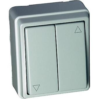 Wall-mount switch Surface-mount Kaiser Nienhaus