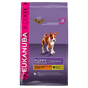 Eukanuba Dog Puppy & Junior Medium Breed 1kg