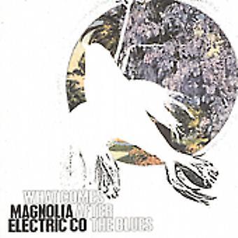 Magnolia Electric Co. - importación de Estados Unidos de lo que viene después del Blues [CD]