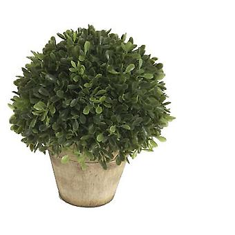 Wellindal blomst bold Boxwood H19 D15 (dekoration, planter og Potter)