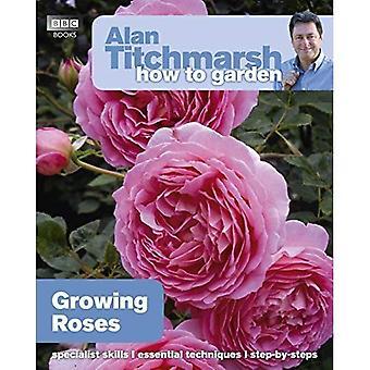 Comment Alan Titchmarsh jardin: De plus en plus Roses