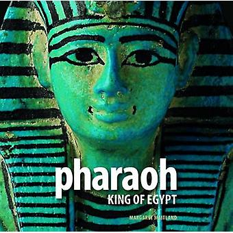 Pharaoh - King of Egypt by Margaret Todd Maitland - 9780714119984 Book