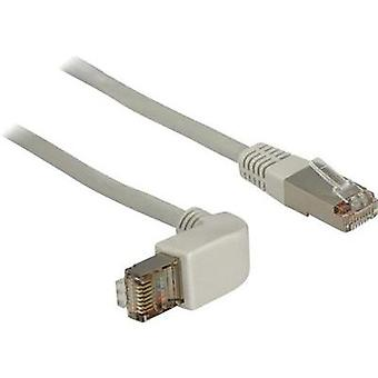 RJ49 Networks Cable CAT 5e S/FTP 1 m Grey Delock
