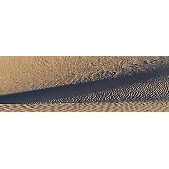 Sand dunes in a desert Eureka Dunes Death Valley National Park California USA Poster Print