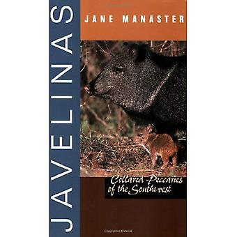 Javelinas: Collared Peccaries of the Southwest