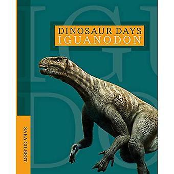 Iguanodon (dinosaure jours)