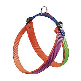 Agila doppia imbracatura di Nylon 7 colori viola/arancio/verde 63-71cm