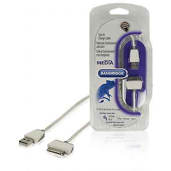 Bandridge sync & charging cable for iPod/iPhone/iPad 2.0 m