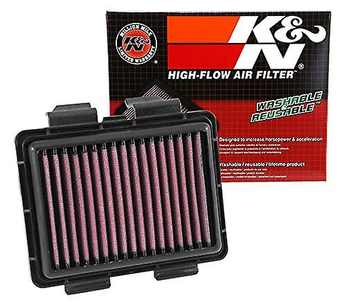 K&N HA-2513 ReplaceHommest Air Filter