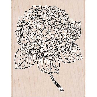 Hero Arts Mounted Rubber Stamp 5.75