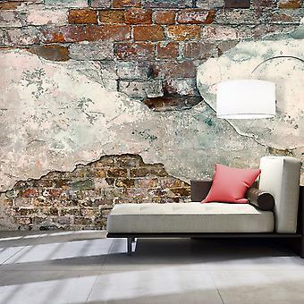 Wallpaper - Tender Walls