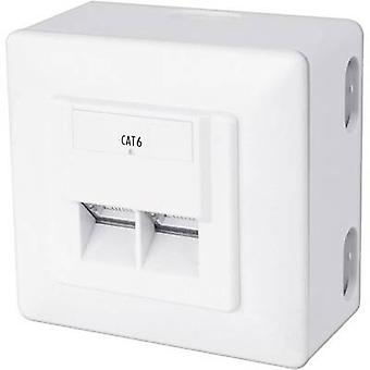 Network outlet Surface-mount CAT 6 2 ports Digitus Pure white 5 pc(s)