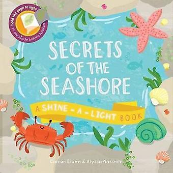 Secrets of the Seashore - A Shine-a-Light Book by Carron Brown - Alyss