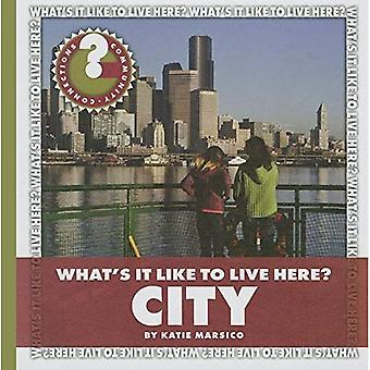 What's It Like to Live Here? City (Community Connections: What's It Like to Live Here?)