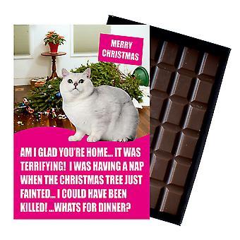 Witte Britse korte haired Christmas Gift chocolade Xmas presenteert voor Cat Lovers chocolade kaart