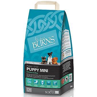 Burns Mini hvalp kylling & ris 2kg