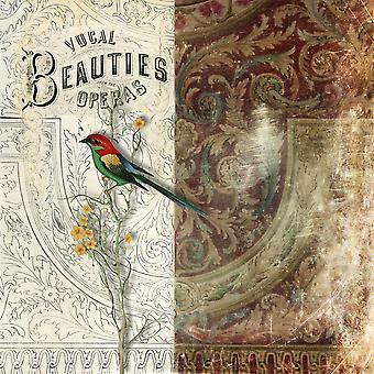 Vocal skønheder plakat Print af Aimee Stewart