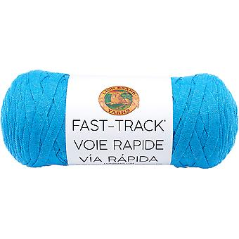 Fast Track Yarn-Cruise Ship Aqua