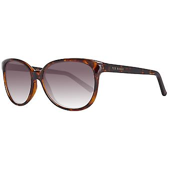Ted Baker sunglasses ladies Brown
