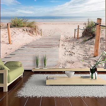 Fondo de pantalla - en la playa