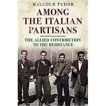 Among the Italian Partisans: The Allied Contribution to the Resistance