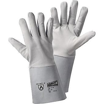 Glove nappa leather/split leather tulip worky