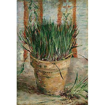 Vincent Van Gogh - Flowerpot with Chives, 1887 Poster Print Giclee