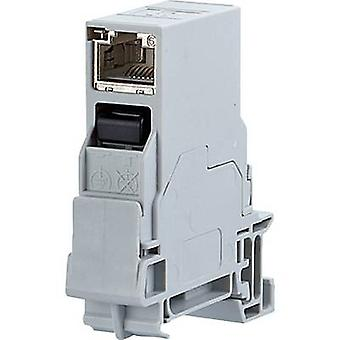 Network outlet DIN rail CAT 6 Metz Connect 1401206113KE Light grey