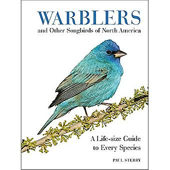 Warblers and Other Songbirds�of North America: A Life-Size�Guide to Every Species