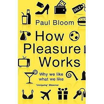 Cómo funciona el placer: Por qué nos gusta lo que nos gusta