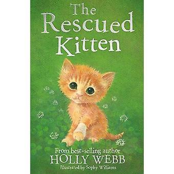 Il gattino salvato da Holly Webb - 9781847159182 libro