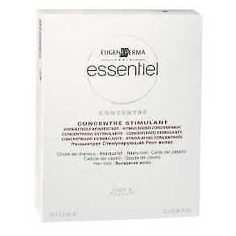 Essentiel Stimulant Concentrate 12X1,2Ml (Beauty , Hair care , Treatments , Hydrating)