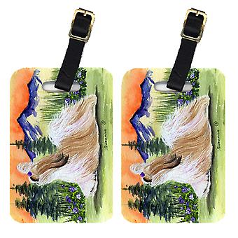Carolines Treasures  SS8179BT Pair of 2 Shih Tzu Luggage Tags