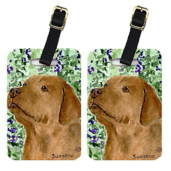 Carolines Treasures  SS8743BT Pair of 2 Labrador Luggage Tags