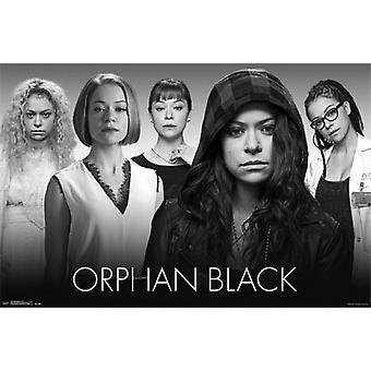 Orphan Black - Faces Poster Print